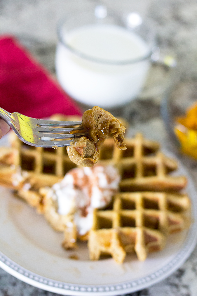 pumpkin, fall, pumpkin, breakfast, pumpkin waffles