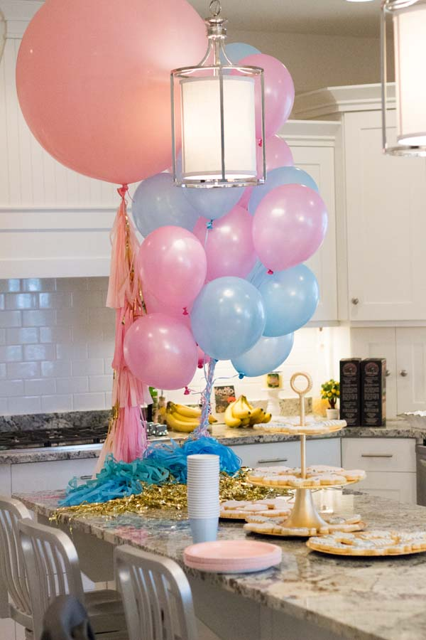 twins gender reveal party