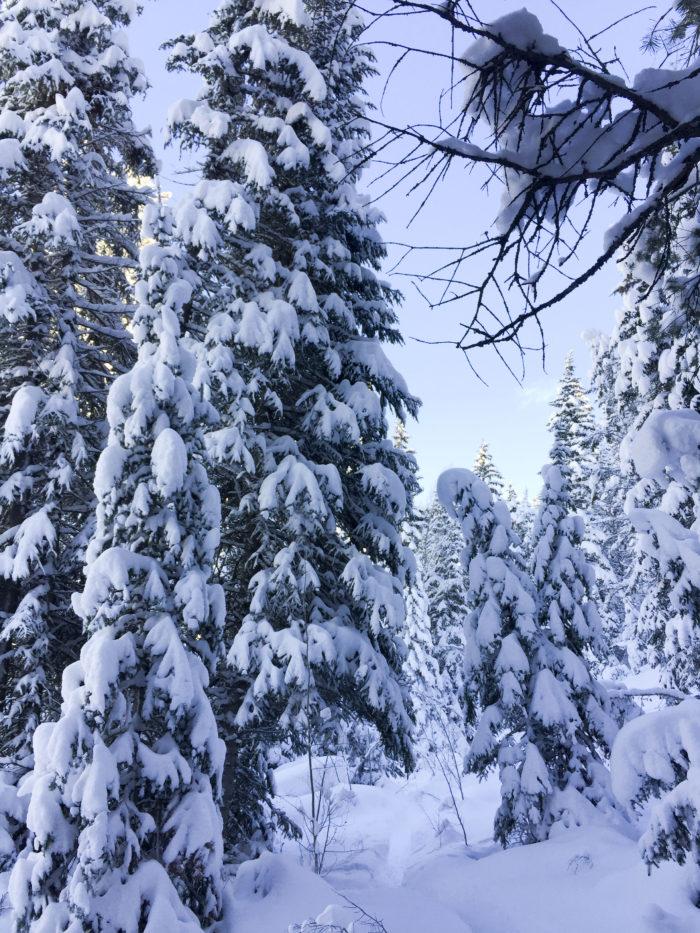 snow-hike-in-utah_6