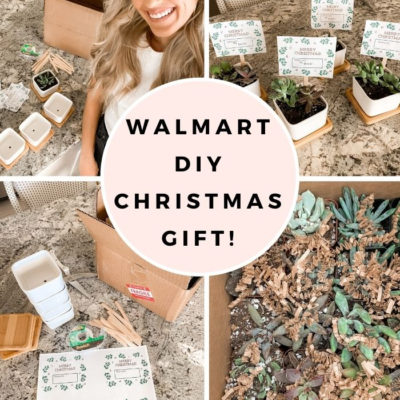 DIY Christmas Gift Anyone Would Love